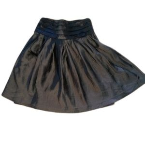 August Silk Silvery Gray Lined Skirt